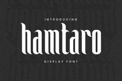 Web Font Hamtaro Font Product Image 1