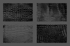 10 Crocodile Leather Texture Overlay Product Image 3