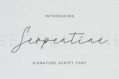 Web Font Serpentine Font Product Image 1