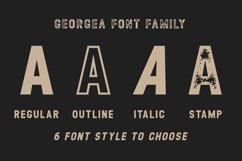 GEORGEA ALL CAPS FONT FAMILY WITH EXTRAS Product Image 2