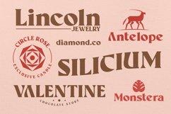 Aveline Elegant Font Product Image 2
