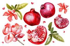 Beautiful watercolor pomegranates Product Image 2
