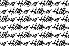 Hillbear - Handbrush Script Font Product Image 6