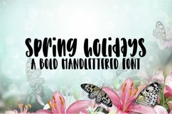 Web Font Spring Holidays - A Bold Hand-Lettered Font Product Image 1