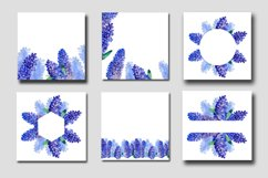 Purple delphinium flower frames and backgrounds Product Image 1