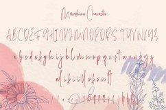 Web Font Moonshine - Classy Calligraphy Font Product Image 6