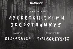 Balibrush Product Image 4