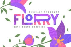 Florry font & illustrations Product Image 1