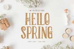 Hello Spring | Fancy Serif Duo Font Product Image 1