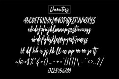 Vesial Font Product Image 6