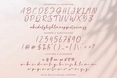 Aliya Ramsey - Handwritten Font Product Image 15