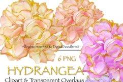 Gold Embellished Hydrangeas Product Image 1
