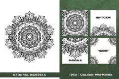 300 Vector Mandala Ornaments Product Image 2