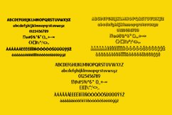 Chageur-LIEUR Bold font Duo Product Image 3