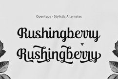 Ralsteda Script - Font Family Product Image 3