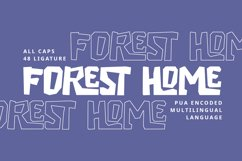 Forest Home Product Image 4