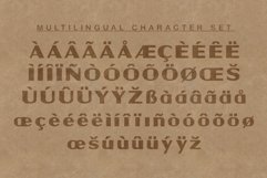Powell   Rugged Display Typeface Product Image 3