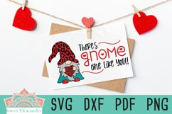 There's Gnome One Like You Valentine Layered Cut File Product Image 2