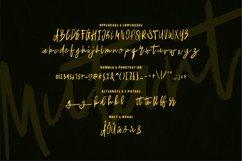 Web Font Mutant - Brush Font Product Image 2