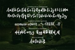 Aulia - Beauty Script Font Product Image 6