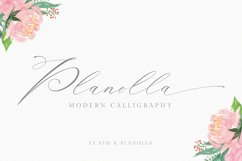 Planolla   Modern Calligraphy Product Image 1