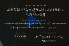 Casstino Handwritten Font Product Image 6