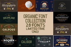 Organic Font Collection Product Image 1