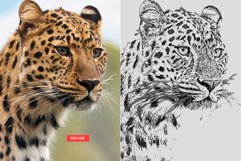 Pencil Sketch Photoshop Action Product Image 9