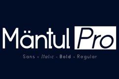 Mantul Pro - 19 Style font Product Image 1
