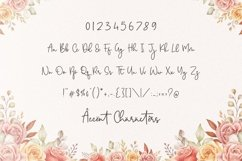 Melwisa Jameson Modern Monoline Calligraphy Font Product Image 6