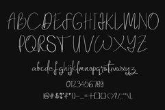 Elanor Font Product Image 5