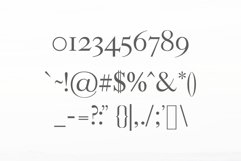 Adallyn Serif Font Family Pack Product Image 3