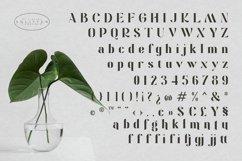 Solitten | Elegant & Stylish Typeface Product Image 5