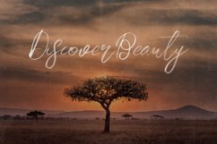 Melody SVG Script Font Product Image 4
