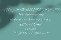 Mildlight Feminine Signature Font Product Image 8