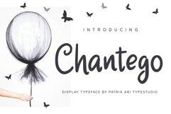 Chantego Product Image 1