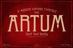 Artum - Serif font family Product Image 1