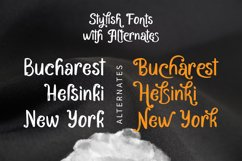 Bacarons - A Stylish Font With Alternatives Product Image 5