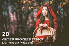 20 Cross Process Effect Presets Product Image 1