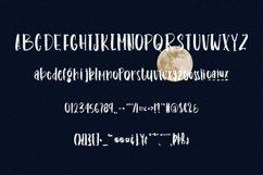 Web Font Hongiing - Fancy Handwritten Serif Font Product Image 6