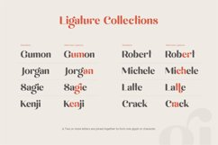 michael beautiful ligature font Product Image 10