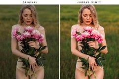 Film Emulation - Lightroom Presets Product Image 23