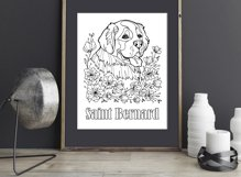 Saint Bernard coloring page Product Image 3