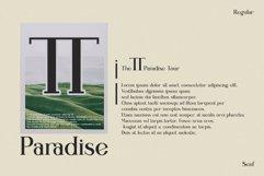 willona vissta Modern Ligature Serif Product Image 6