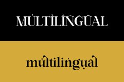 Ring Netlike - Classic Serif Font Product Image 2