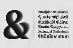 Ralsteda Script - Font Family Product Image 6