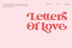 The Fieasto/Modern serif Font Product Image 3