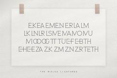 The Melsa - Modern Ligature Sans Product Image 6