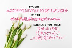 Spring Tulips Font - A Fun Hand Lettered Serif Font Product Image 3
