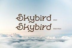 Skybird Family - Crazy, unique & retro Product Image 5